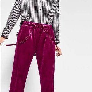 Zara Fuchsia Velvet Jogger Pants, Small, NWT